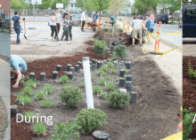'Greening Medford to Improve the River' Aug. 26th